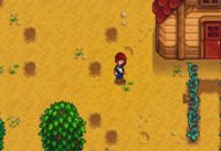 stardew valley item spawning cheat