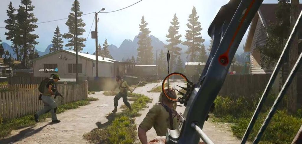 far cry 5 online coop how many players